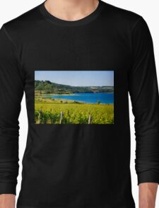 Grapevines in a vineyard. Photographed in Tuscany, Italy Long Sleeve T-Shirt