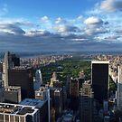 NYC: Central Park by Nina Papiorek