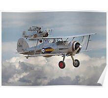 Gloster Gladiator Poster