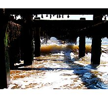 The Monster In The Groyne! Photographic Print