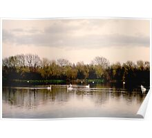Upon Swan Lakes Poster