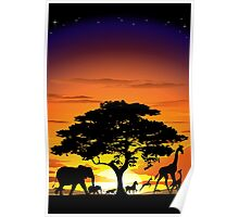 Wild Animals on African Savanna Sunset  Poster