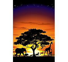 Wild Animals on African Savanna Sunset  Photographic Print