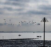 Early Morning Tide by Nigel Bangert