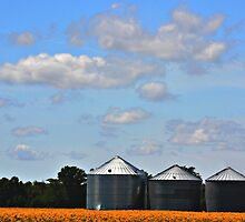 Silos Under a Dreamy Sky by Sheryl Gerhard