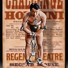 The Great Houdini by Richard  Gerhard