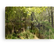 White River Landscape 6749 Metal Print