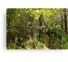 White River Landscape 6749 Canvas Print