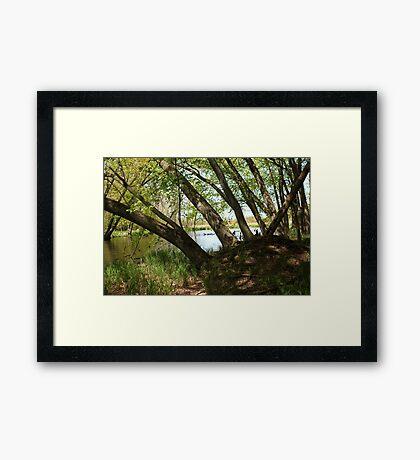 """White River Marsh """"Highlands"""" 6778 Framed Print"""