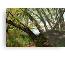 "White River Marsh ""Highlands"" 6778 Metal Print"