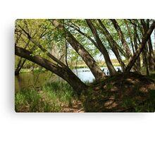 "White River Marsh ""Highlands"" 6778 Canvas Print"