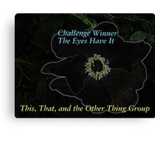 Banner for Challenge Winner - Eyes Canvas Print