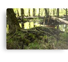 White River Marsh Landscape 6799 Metal Print