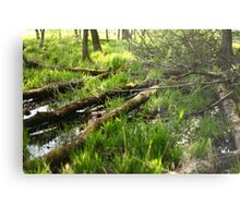 White River Landscape 6810 Metal Print