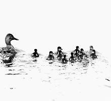 The Family Mallard by Stan Owen