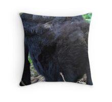Mother & Baby Mountain Gorilla, Kwitonda Group, Rwanda Throw Pillow