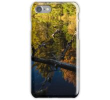 Fall Mirror - Mesmerizing Forest Lake Reflections iPhone Case/Skin