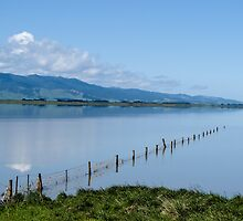 fence in the lake by Anne Scantlebury