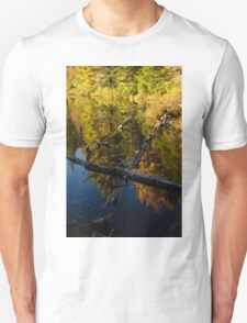 Fall Mirror - Mesmerizing Forest Lake Reflections Unisex T-Shirt