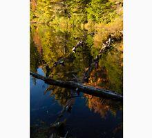 Fall Mirror - Mesmerizing Forest Lake Reflections Unisex T-Shirt
