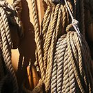 Ropes and knots on Tall Ship by Sandra Lee Woods