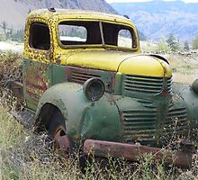 Old truck by Suzan Parrott