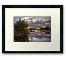 Peace and Trees Framed Print