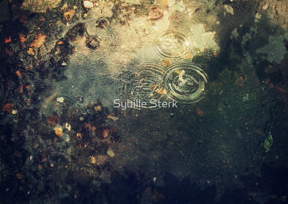 Ripples by Sybille Sterk