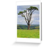 The Lonely Tree. Greeting Card