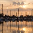 Pale Gold Sunrise With Yachts  by Georgia Mizuleva