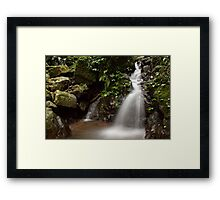 Of Green and Water Framed Print