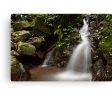Of Green and Water Canvas Print