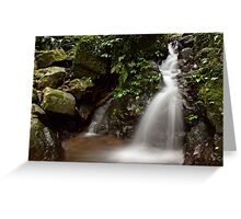 Of Green and Water Greeting Card