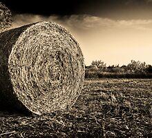 Round Hay by Motti Golan