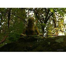William Ricketts Sanctuary 005 Photographic Print