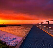 """Swan Bay Dawn"" by Phil Thomson IPA"
