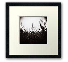 { field dreams } Framed Print