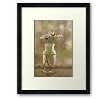 Rainy Day Daisys Framed Print