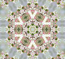 Spring Blooms by Monnie Ryan
