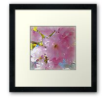 Pink Skirted Sky... Framed Print