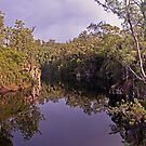 Rosebery Reflections Panorama by TonyCrehan