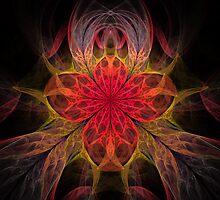 Red Iris by Pam Amos
