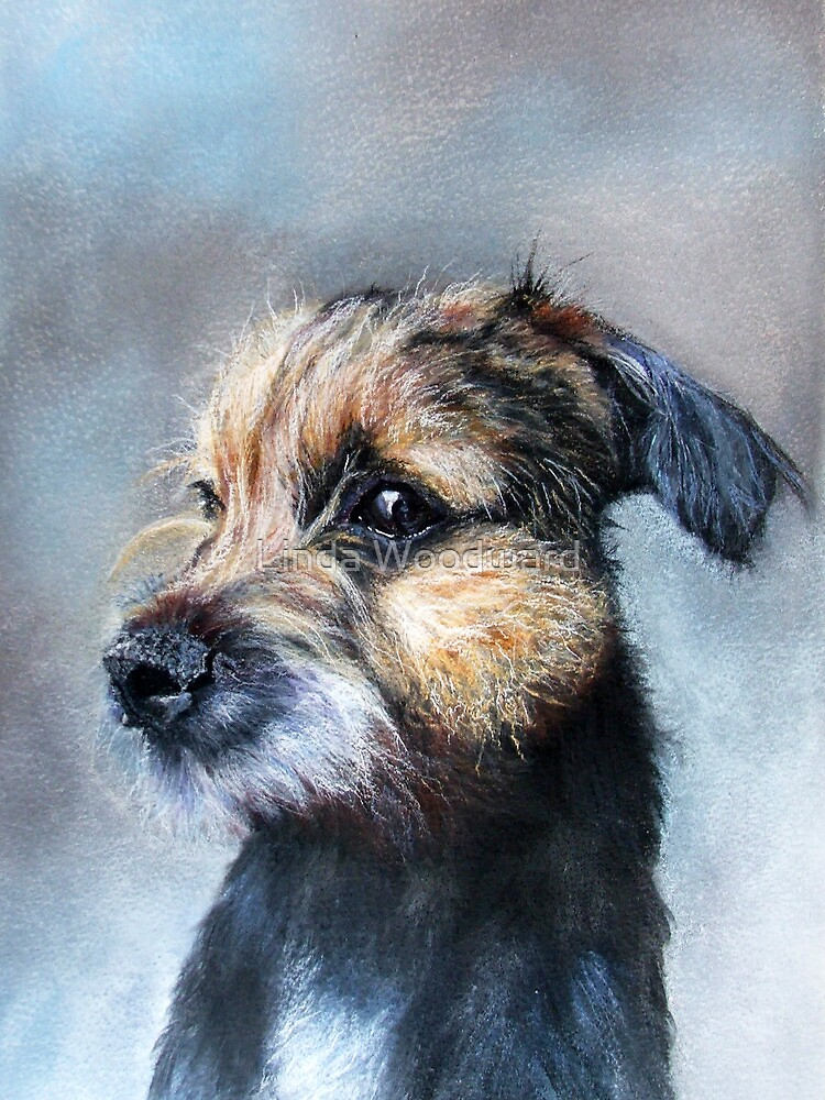 Ollie by Linda Woodward