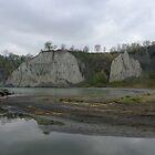 Scarborough Bluffs On A Rainy Day by Tracy Wazny