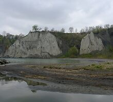 Scarborough Bluffs On A Rainy Day by Tracy Faught