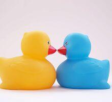 Kissing Ducks by Chloe Price