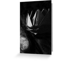 Black Lotus Greeting Card