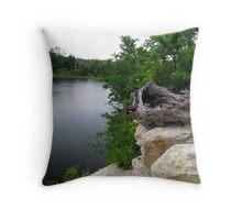 Lake Pickens, Sherman, Texas, USA Throw Pillow