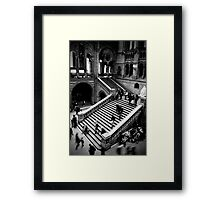 Motion - Natural History Museum Framed Print