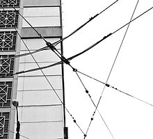 Wired by PopPopPhoto